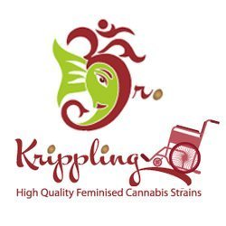 Dr Krippling Seeds