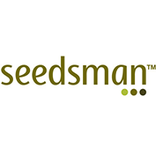 African Buzz Regular Seeds