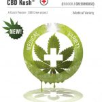 CBD Kush Feminised Seeds
