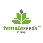 Auto AK Feminised Seeds