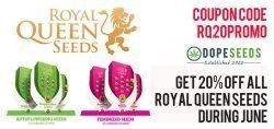 royal queen seeds 20% discount