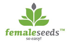 Female Seeds Sex Bud Feminised Seeds