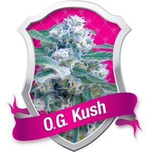Royal Queen Seeds O.G. Kush Feminised Seeds