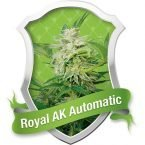 Royal Queen Seeds Royal AK Automatic Feminised Seeds