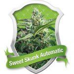 Sweet Skunk Automatic Feminised Seeds