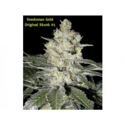 Seedsman Original Skunk #1 Regular Seeds