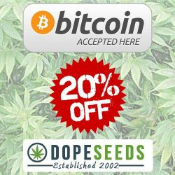 bitcoin discount cannabis seeds