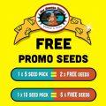 free cheese female seeds