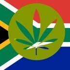 Buy cannabis seeds in South Africa