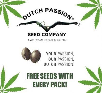 Dutch passion free seeds promo