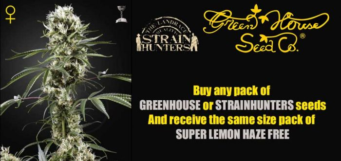 greenhouse free seeds promo