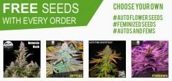 free seeds every order