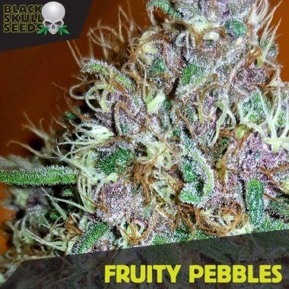 Blackskull Fruity Pebbles Feminized seeds
