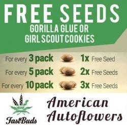 fast buds free seeds