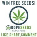 win free seeds
