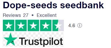 Trust pilot dope seeds