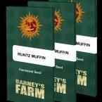 Barneys Farm Runtz Muffin feminised seeds